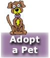 Adopt a pet, Groups known by You Dirty Dog Mobile Dog and Cat Grooming services